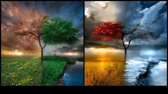 SEASONS (I borrowed this picture from my church's website}